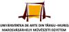 Universitatea de Arte (Târgu-Mureș)